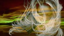 des cheveux blancs de femme sur un fond stylisé